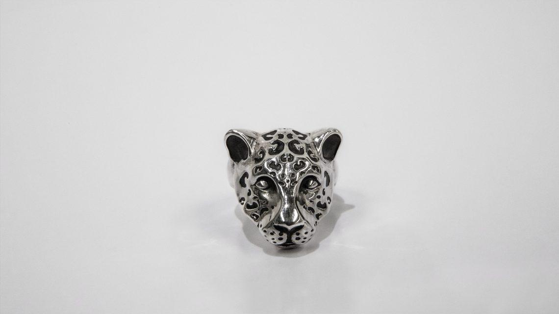 Jaguar plateado 2